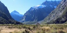 Glacier carved valley - Fjordland