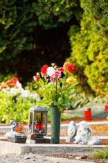 Dahlias on grave