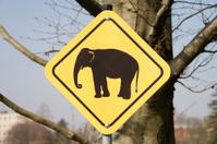 elephant sign horizontal