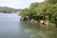 Ship wreck scene in Honduras reef