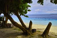 island scape
