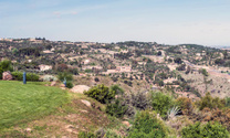 Toledo fields