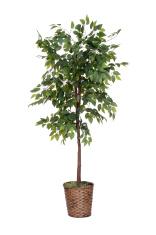 isolated fake tree