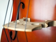 Double Bass close-up 06