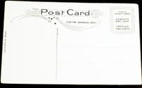 blank vintage postcard: 5