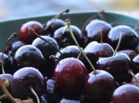 Bowl of cherries (like life)