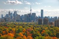 Toronto Autumn 2013