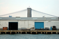 Bridges in Brooklyn