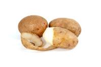 Whole and half-peeled potato