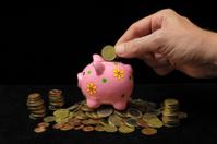 Pink Pig Piggy Bank