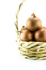 Ripe golden onions