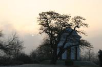 Dusk at Kassel Weinberg Pavillion