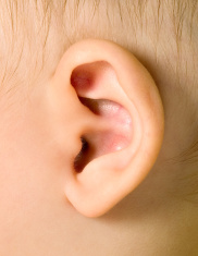 Ear of baby boy
