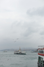 seagulls are flying over traditional passenger boat of istanbul
