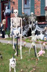 Halloween Skeleton Family