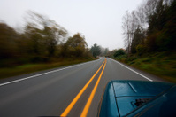 Foggy Fall Drive