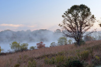 Marsh Creek State Park at Dawn