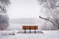 Bench facing lake during fresh snowfall