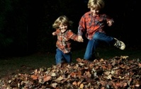 Little Boys Playing In Leaves