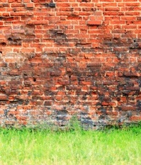 Grungy background of a brick wall texture