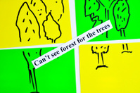 Can't see forest for the trees