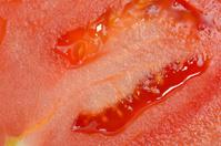 Closeup of tomato