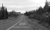 Double rail crossing