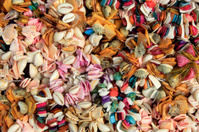 Be riotous with colour shells