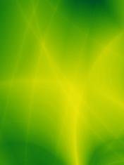 Green bio nature abstract wallpaper