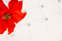 Christmas:  December calendar with focus on the 25th.  Poinsetta
