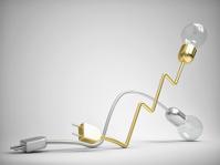 bulb race