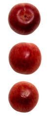 Food: Pluot Plum Trio