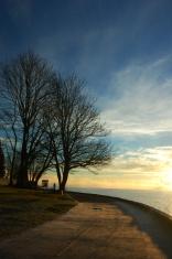 sunrise in stanley park