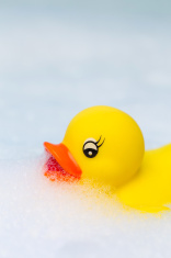 Plastic duck floats in bubble bath