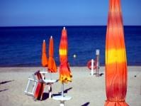 The beach umbrellas