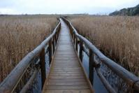 Narrow long bridge