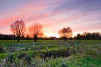 West Harnham Water Meadows