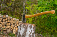 Chopping wood in the backyard