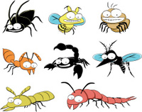 insect pests at home vector