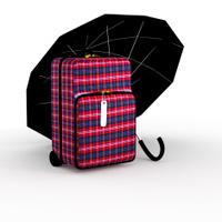 Suitcase 3d.