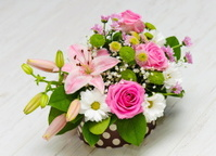 flawers in a gift box