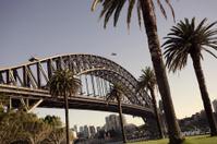 sydney bridge at morning