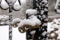 Door-handle with snow