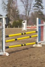 Show jumping is ready