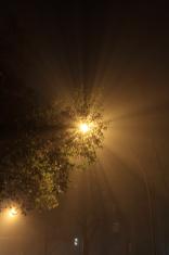 streetlight with fog at night