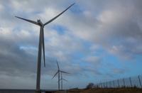 Giant windmills in Avedøre