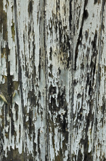 Peeling grey paint on wooden panel