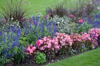 Flower bed in a garden