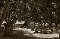 Sepia Graveyard