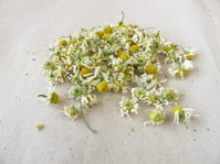 Dried chamomile flowers on paper